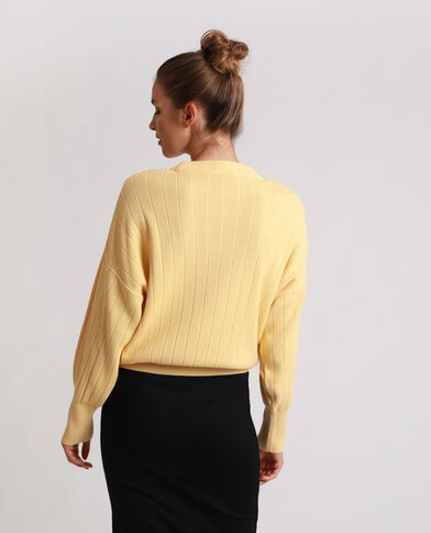 Pull striato giallo