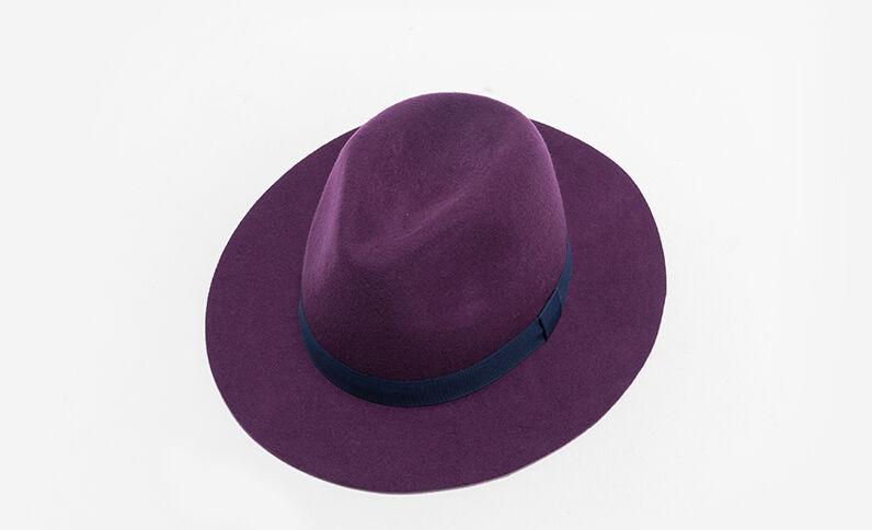 Fedora bicolore viola