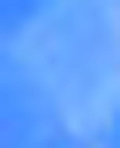 Lotto di 2 pinzette blu