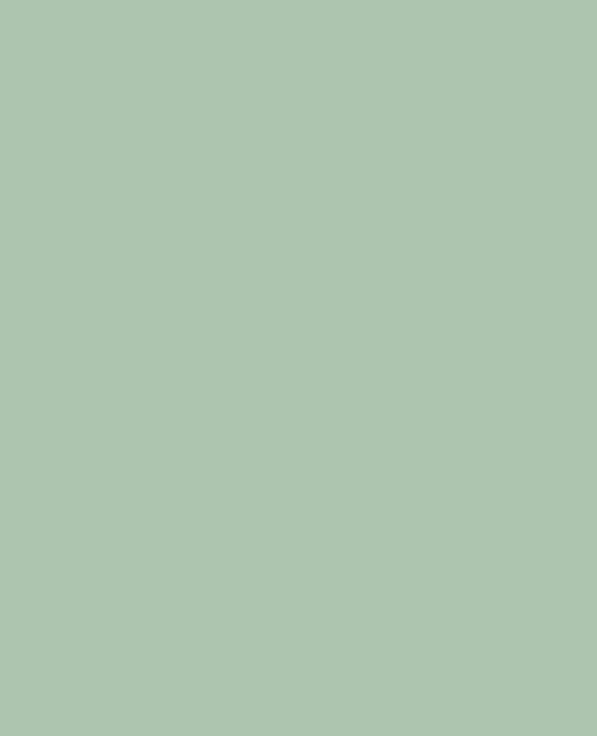 Sciarpa goffrata verde - Pimkie
